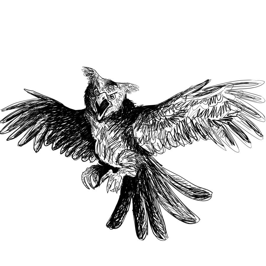 028 murderbird